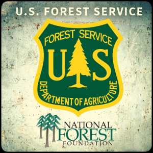 89._US_Forest